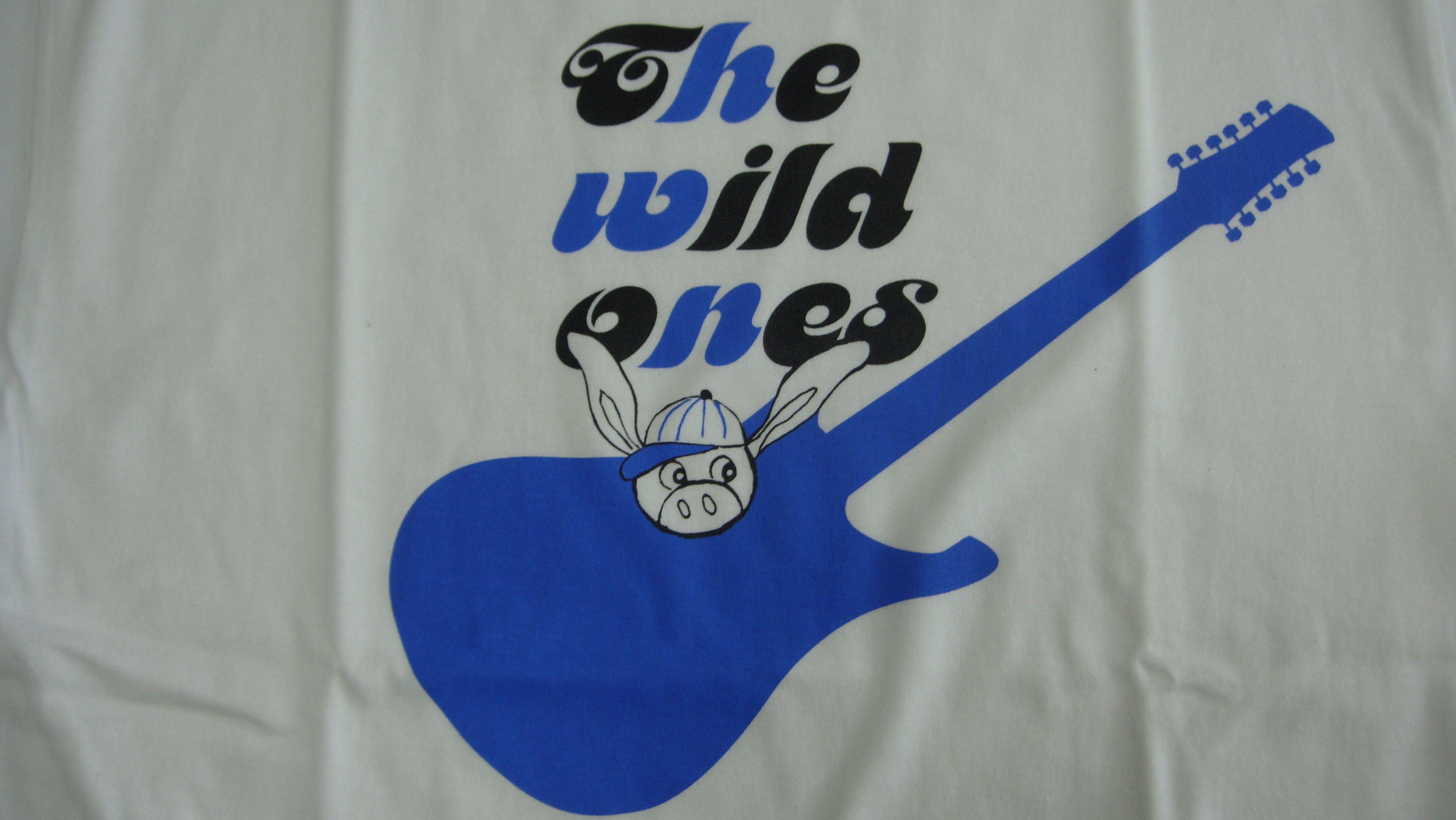 THE WILD ONES 2017・白